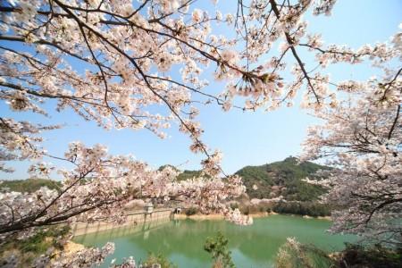 大阪永樂水壩01
