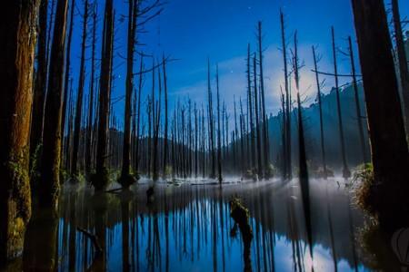 台灣秘境|台灣十大景點|水漾森林