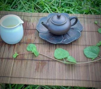 池記。茶手作~為自己作的茶