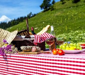 走吧!跟世界一起野餐趣 (上)