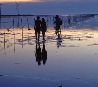 【遠雄輕旅行】夕陽下的高美濕地