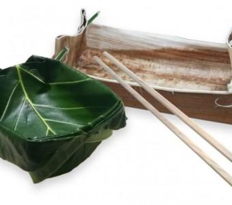 新食器時代來臨-葉食台灣